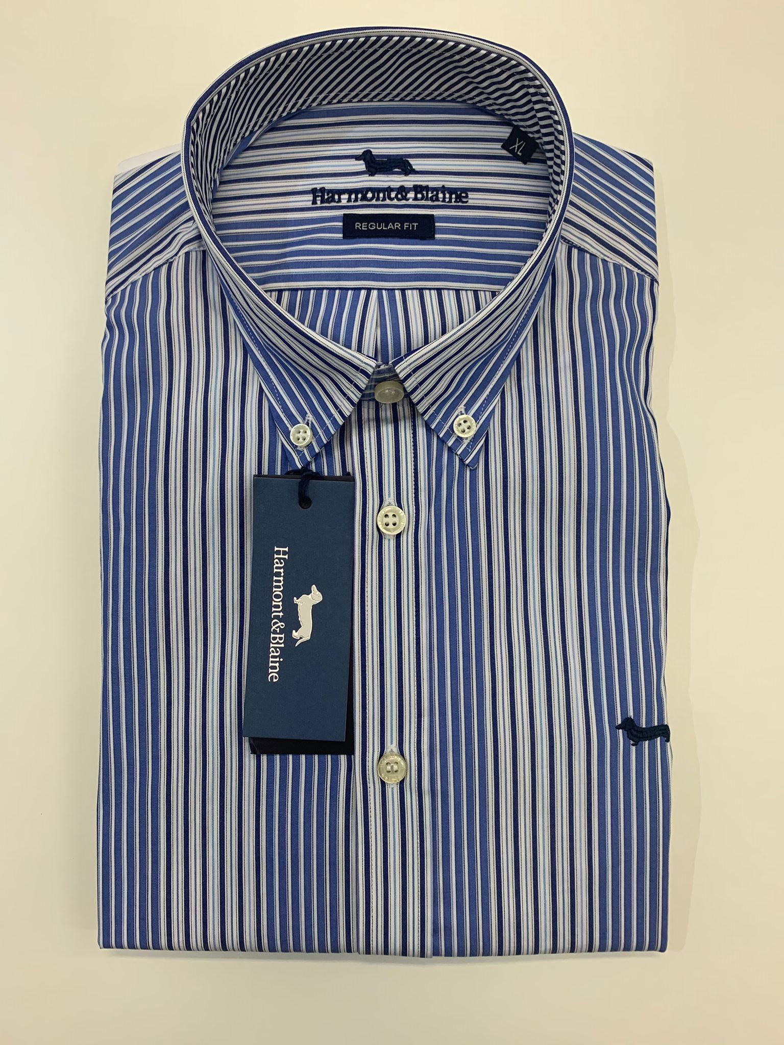 Camicia Harmont E Blaine 2 Tessuti Cotone a Righe Azzurro